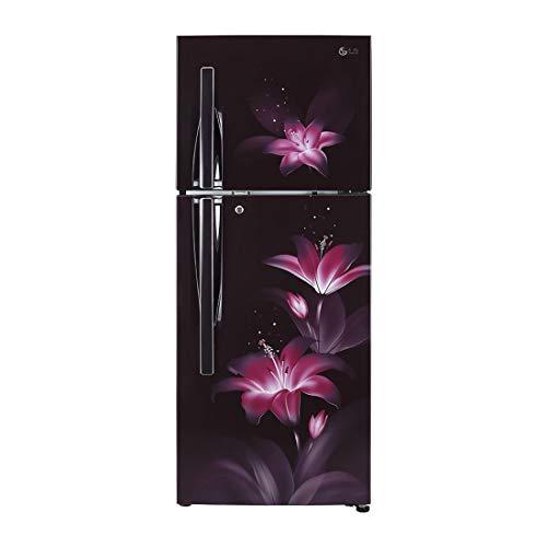 LG 284 L 3 Star Inverter Frost-Free Double-Door Refrigerator (GL-T302RPGU, Purple Glow)