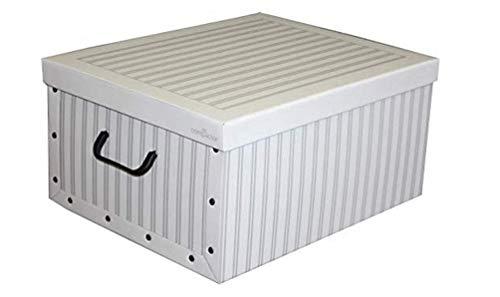 Compactor Anton - Caja de cartón de 50x 40x 25cm, Color Blanco