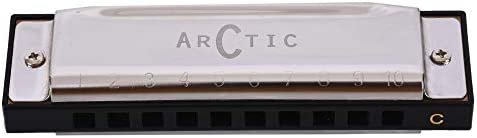 Arctic Key C 10 Hole Diatonic Blues Mouth Organ Harmonica for Professional Player, Silver