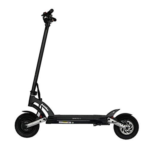 Patinete eléctrico para adulto, patinete eléctrico, patinete para adultos, patinete eléctrico, 25 km/h, gama Mantis GT – hasta 120 kg, 2000 W, color gris