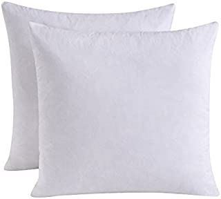 HOMESJUN Set of 2, Feather and Down Square Decorative Throw Pillow Insert, 100percent Cotton,White,20x20