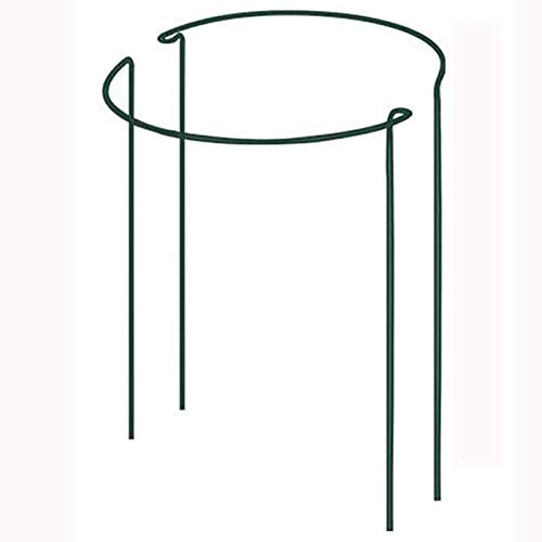 DSHE Plant Support Ring Half Round Garden Peony Support Green Metal Plant Support Cage for Tomato, Rose, Vine Plant, Flower Growing