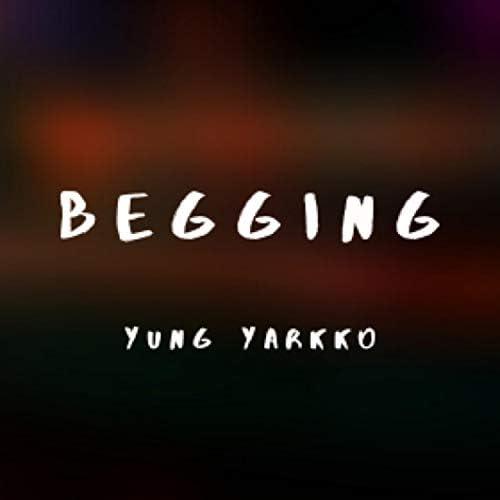 Yung Yarkko