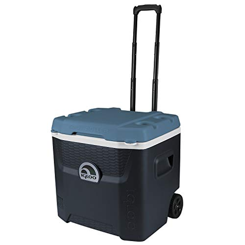 Igloo Nevera rígida con ruedas, Maxcold, Jet Carbon/Ice Blue, 49 L