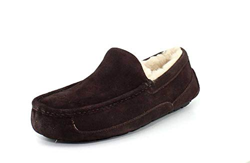 UGG Male Ascot Slipper, Espresso, 11 (UK)