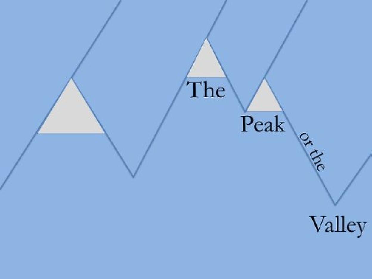 労働者スリム加速度The Peak or the Valley (The First of a Hopeful Many Book 1) (English Edition)