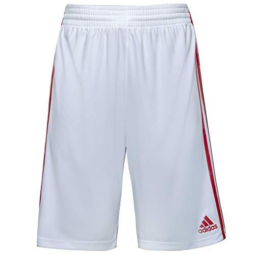 adidas - Basketball-Shorts für Herren