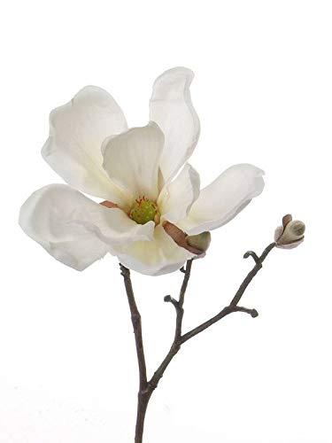 artplants.de Künstlicher Mini Magnolien Zweig Trisha, Creme, 25cm, Ø 10cm - Kunstblume - Deko Magnolie