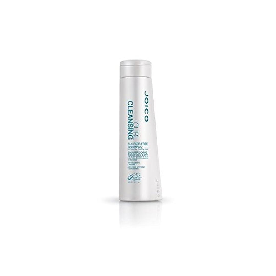カブトランスペアレント怒っているJoico Curl Cleansing Sulfate-Free Shampoo For Bouncy, Healthy Curls (300ml) (Pack of 6) - 快活、健康カール用ジョイコカールクレンジング硫酸フリーシャンプー(300ミリリットル) x6 [並行輸入品]
