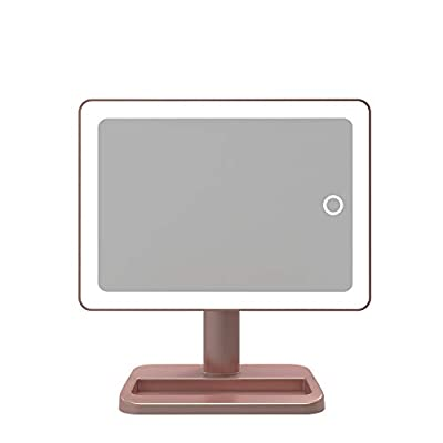 FENCHILIN Vanity Mirror with Lights Bluetooth Lighted Makeup Mirror Touch Screen Wireless Audio Speaker Dimmable Light Detachable 10X Magnification Rechargable Power?Rose Gold?