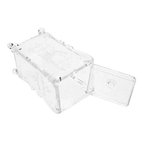 Caja de almacenamiento organizadora, caja de almacenamiento fácil de limpiar para amantes del arte de uñas para salón(Transparent)