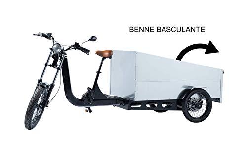 TRIPS Triporteur Tricycle électrique 250 Kg de Charge. Modules : Street Food Truck Cuisine- Trans palettes - Pickup - Cargo Livraison - Taxi - (Pickup)