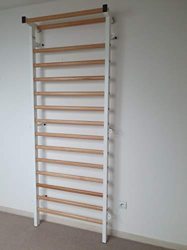 ARTIMEX espaldera Metal/Madera para Fisioterapia y Gimnasia - Utilizado en hogares, gimnasios, clínicas y centros de acondicionamiento físico - 230x90 cm, código 221-M