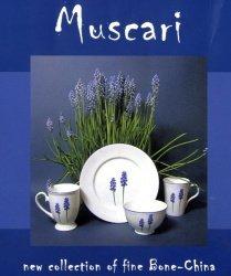 Mahlwerck Porzellan Frühstücks-/Kaffee-Geschirr MUSCARI, 11-tlg. für 3 Personen, Im Angebot