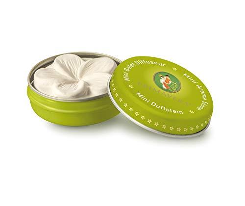 PRIMAVERA Mini-Duftstein - Duftstein mit Dose für Unterwegs, Raumduft, Diffusor - Keramik-Frangipaniblüte - Aromatherapie