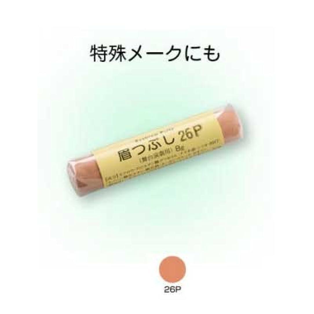 三角形堤防修理工眉つぶし 26P【三善】