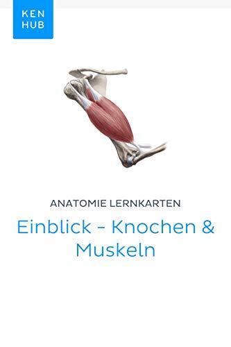 Anatomie Lernkarten: Einblick - Knochen & Muskeln: Lerne alle Knochen, Ligamente und Muskeln unterwegs (Kenhub Lernkarten 19)