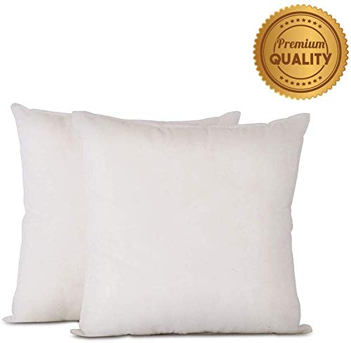 Buy Discount Plankroad Home Decor 18×18 Outdoor Water Resistant Poly Square Pillow Insert, Breathable Shell, Never Vacuum-Packed, Set of 2