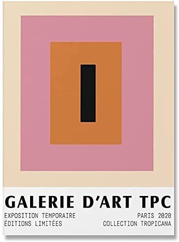 YaShengZhuangShi Imagen de póster 70x90cm Rosa sin Marco Matisse Extremadamente fácil Artista de Pared Abstracto decoración del hogar, Carteles e Impresiones nórdicos, Pintura en Lienzo