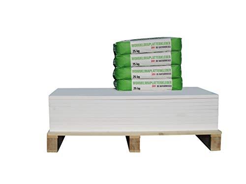 CaSi-Systems - Juego de renovación de placa climática (50 mm, pre-imprimada, placa de silicato de calcio, incluye imprimación de silicato y pegamento para placas climáticas (15,1 m2)