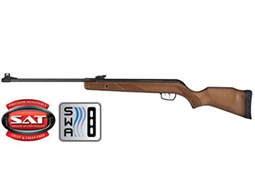 Gamo Hunter Big Cat Air Rifle air rifle