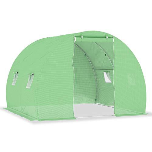 Benkeg Invernadero con Cimientos de Acero Verde 6 M² 3X2X2 M para...