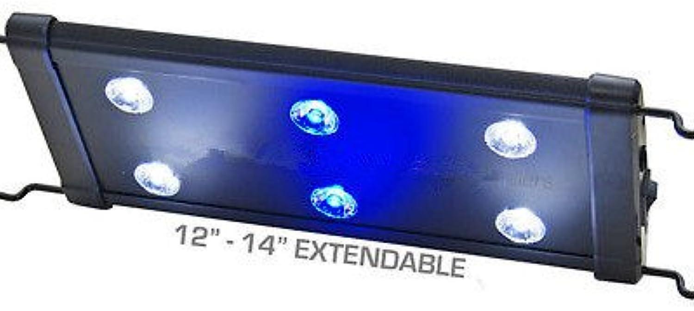 EVO 12 LED Aquarium Light Nano Marine Coral Reef Cichlid 6X 3W 3 Watt 3040 cm by Odyssea