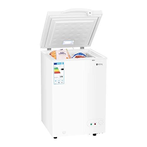 Royal Catering Arcón Congelador Profesional RCFZ-98 (98 L, A+, Consumo anual 170 kWh, Iluminación interior, Cerradura, Temperatura -12 bis - 28°C, incl. Cesta, Rejilla de separación)