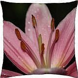 Pink Oriental Lilly - Throw Pillow Cover Case (18