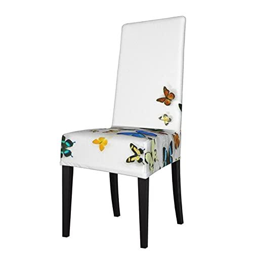 Fondos de mariposa Fondos de escritorio desmontable silla de comedor cubierta cubierta de asiento es adecuado para banquetes de ceremonia de hotel