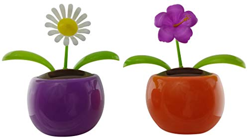 Eco-friendly Solar Powered Dancing Flower Toys | Purple Wildflower and White Daisy Solar Flowers in Decorative Pots | Office Desk, Car Décor, and Sunflowers in colorful pots | (2 Pack)