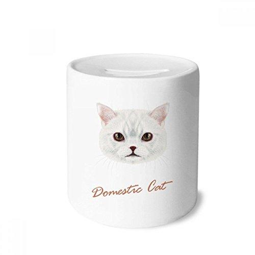 DIYthinker Weiß Hauskatze Haustier-Tier-Geld-Kasten Sparkassen Keramik Münzfach 3.5 Zoll in Height, 3.1 Zoll in Duruchmesser Mehrfarbig