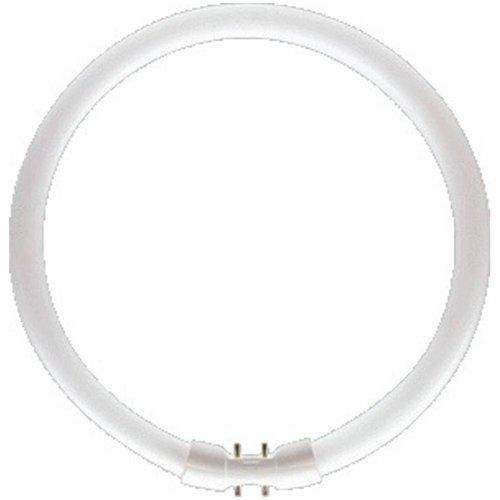 Philips TL5-C 840 - Lámpara fluorescente circular (2GX13, 60 W, eficiencia energética: A)