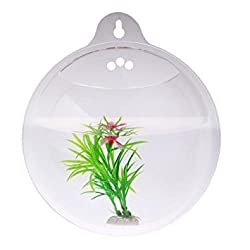 PMLAND Wall Mounted Acrylic Fish Bowl - Best Wall Mounted Aquariums