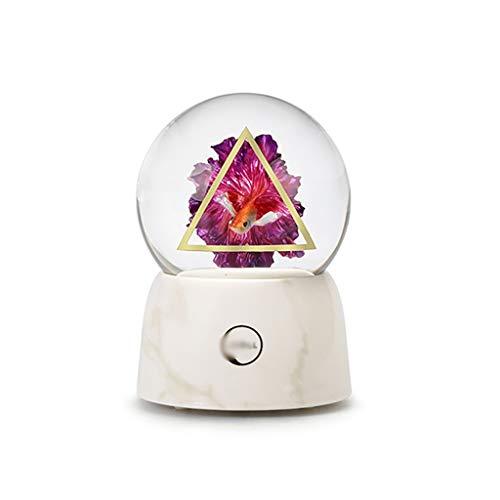 Dongxiao Musicbox - Caja musical de escritorio para oficina, bola de cristal 3D, diseño de peces, cumpleaños, decoración del hogar, Navidad, día de San Valentín, decoración de música (color natural)