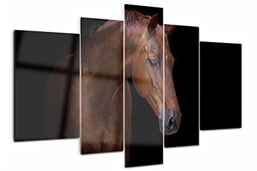 Tulup Cuadro de Cristal 170x100cm Impresión de 5 Piezas Pintura sobre Vidrio Imagen Gráfica Decoracion de Pared Moderno Vidrio Cristal - Caballo marrón