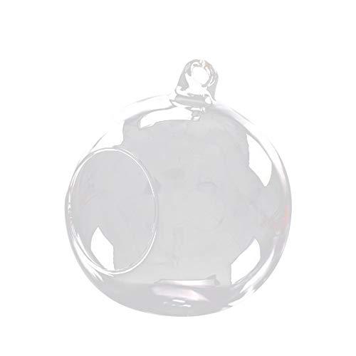 kentop crasas Plantas Bola decorativa Mini colgante cristal transparente Jarrón de cristal...