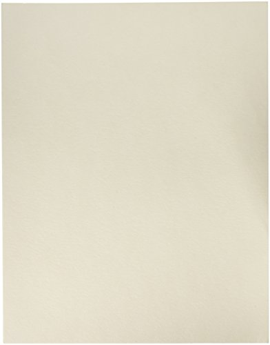 Arnold Grummer's Reusable Paper Couch Blotter Sheet, 9-1/4 x 11-3/4 Inches, Pack of 20