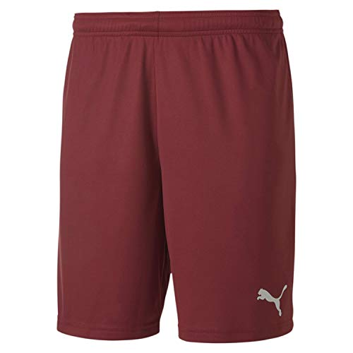 PUMA teamGOAL 23 Knit Shorts Homme, Cordovan, FR : M (Taille Fabricant : M)