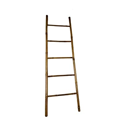 Bamboo Ladder, 60H