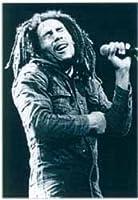 Bob Marley - Holding Mic Poster - 86x61cm
