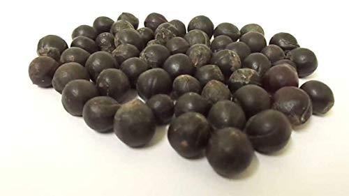 25 Sapindus mukorossi-frön, tvålnötsfrön, tvålnöt, tvålbär, tvålbär, tvättnöt och tvättmutter.