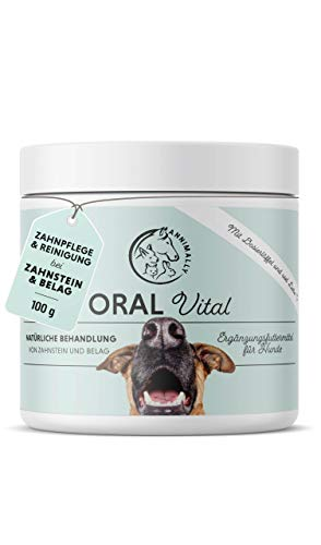 Annimally Zahnpflege Pulver für Hunde I Mittel gegen Zahnstein Hund - Natürliche besonders effektive Zahnreinigung bei Gelben Zähnen, Mundgeruch und Plaque (100 g)
