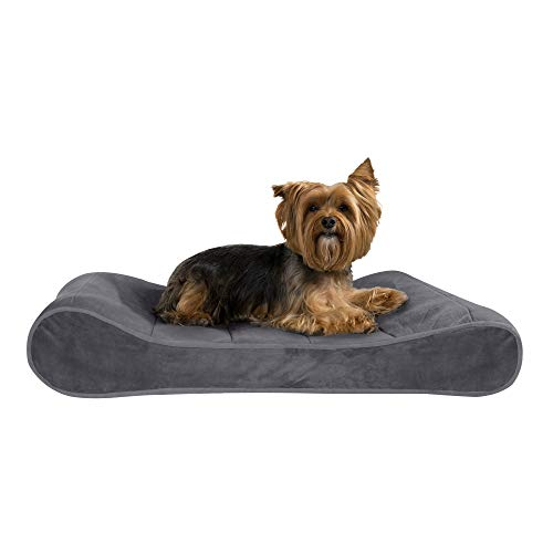 Furhaven Pet Dog Bed - Orthopedic Micro Velvet Ergonomic Luxe Lounger Cradle Mattress Contour Pet Bed w/ Removable Cover for Dogs & Cats, Gray, Medium
