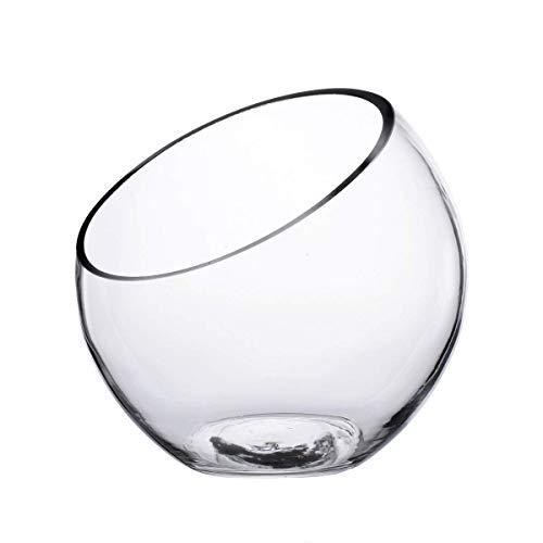 Ecosides Large Opening Glass Terrarium, Fish Bowl, Tabletop Airplant Holder, Glass Vase, Home Vase Decoration