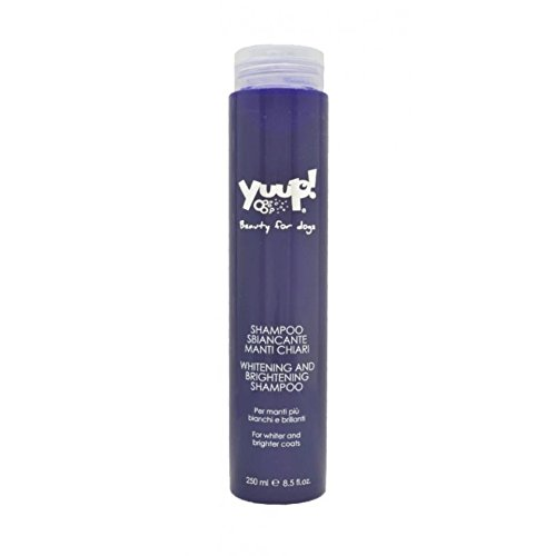 Yuup Shampoo Sbiancante Manti chiari - Per manti più bianchi e brillanti, per cani