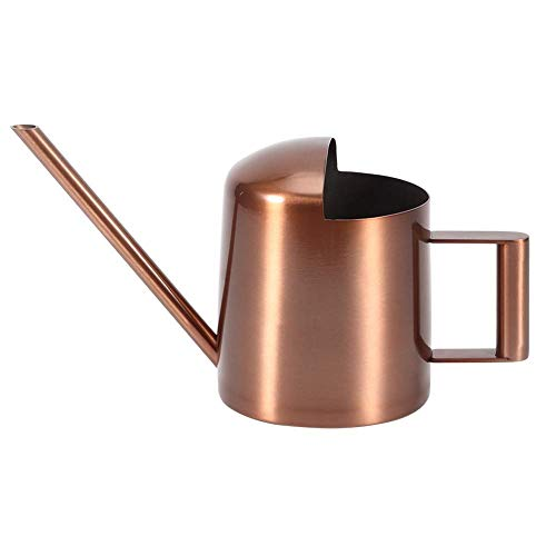 AUNMAS 300ml Indoor Mini Stainless Steel Plant Watering Can Plant Modern Outdoor Bonsai Flower Long Spout Sprinkling Pot for Home Kids Office
