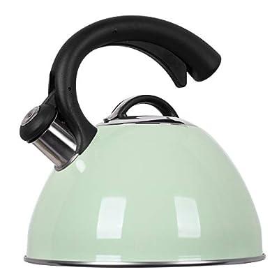 ROCKURWOK Tea Kettle, Stovetop Whistling Kettle, Stainless Steel, 2.63-Quart, Mint Fizzy Green