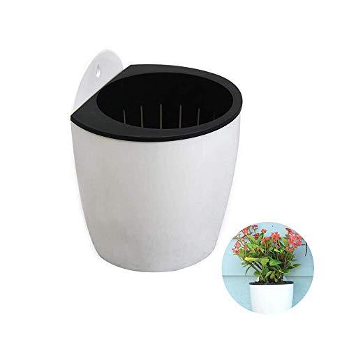 Lazy Pflanzer Selbstbewässernde Pflanze Blumentopf Wand Hängende Lazy Pflanzer Selbstbewässernde Pflanze Kunststoff Automatische Wasseraufnahme Lazy Flower Pot Wandbehang Blumentopf mit Haken14cm*14cm