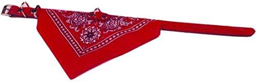 Halsband met zakdoek 45 cm Rood